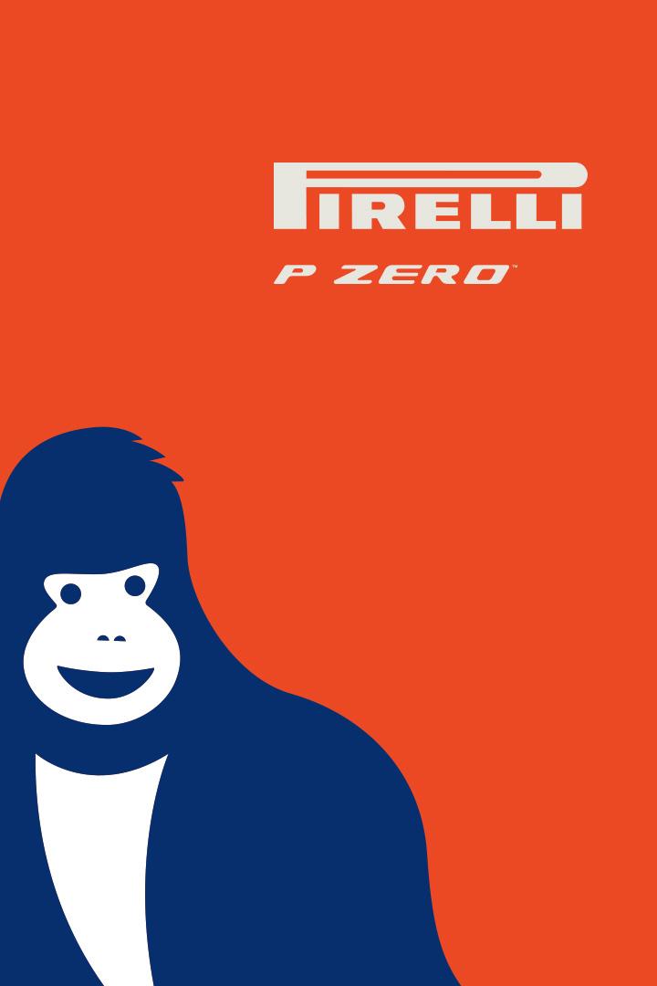Pirelli P ZERO™